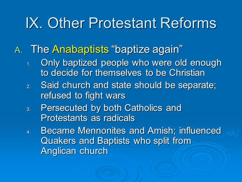 IX. Other Protestant Reforms