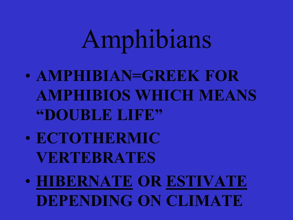 Amphibians AMPHIBIAN=GREEK FOR AMPHIBIOS WHICH MEANS DOUBLE LIFE