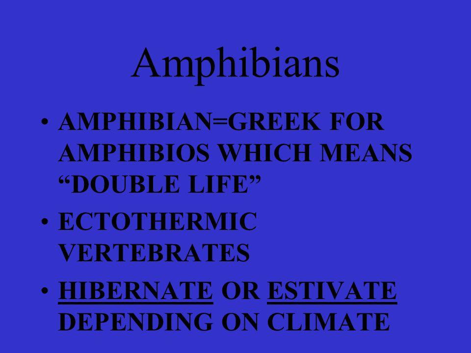Amphibians AMPHIBIAN=GREEK FOR AMPHIBIOS WHICH MEANS DOUBLE LIFE