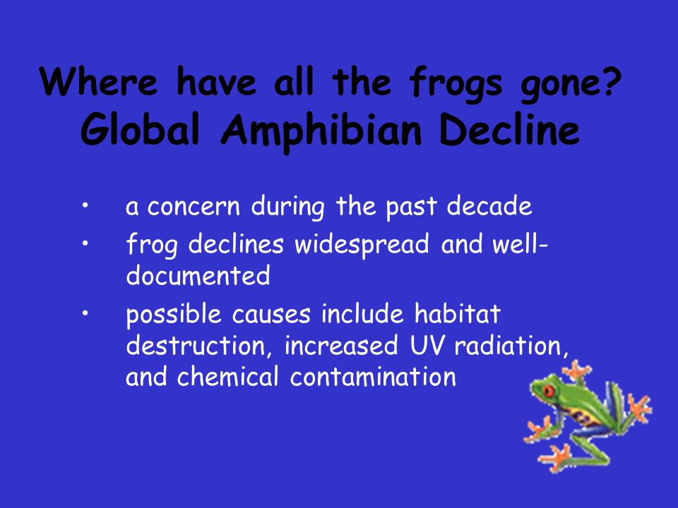 Where have all the frogs gone Global Amphibian Decline