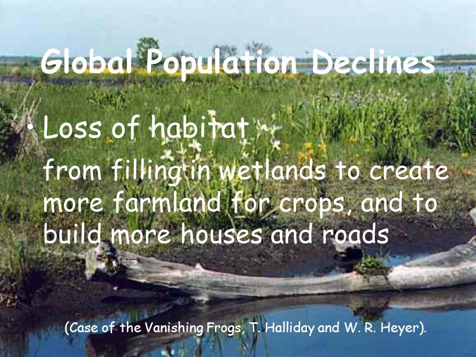 Global Population Declines