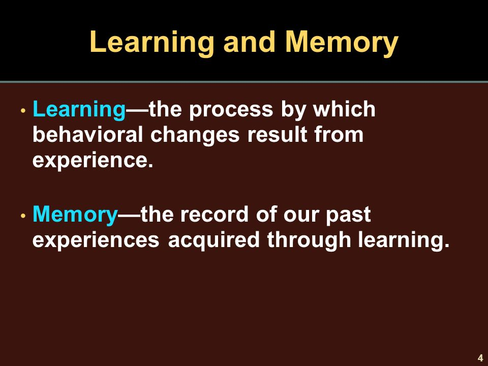 learning and memory psy 340 View essay - psy 340 week 5 memory and learning team paper team b from  psy 340 psy 340 at university of phoenix running head: learning and.