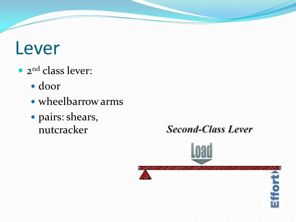 Lever 2nd class lever: door wheelbarrow arms pairs: shears, nutcracker