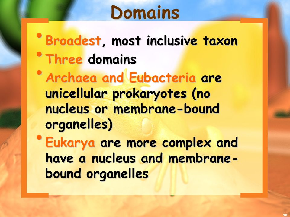 Domains Broadest, most inclusive taxon Three domains