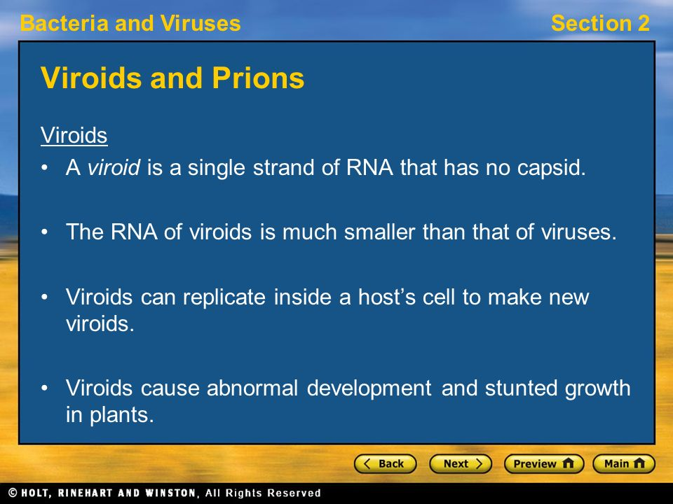 Viroids and Prions Viroids