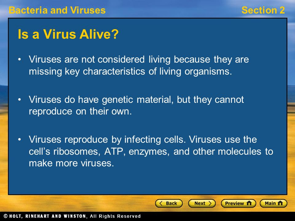 Is a Virus Alive Viruses are not considered living because they are missing key characteristics of living organisms.
