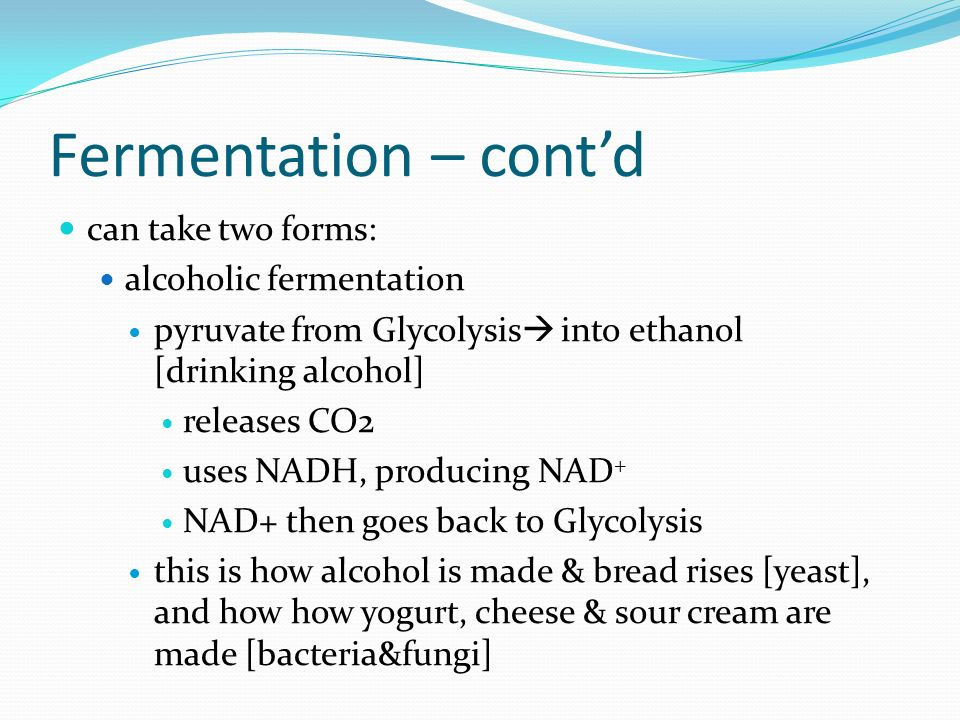 Fermentation – cont'd can take two forms: alcoholic fermentation