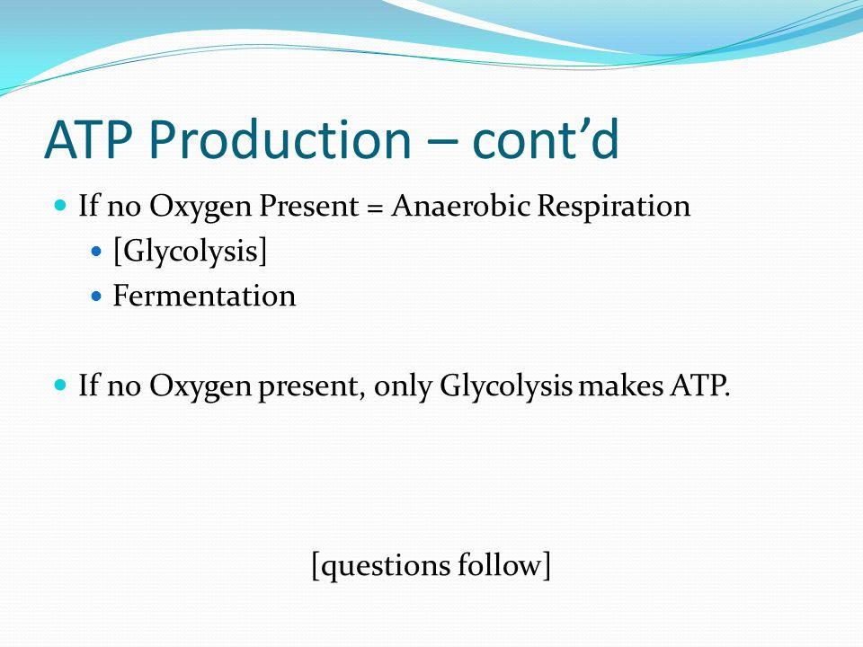 ATP Production – cont'd