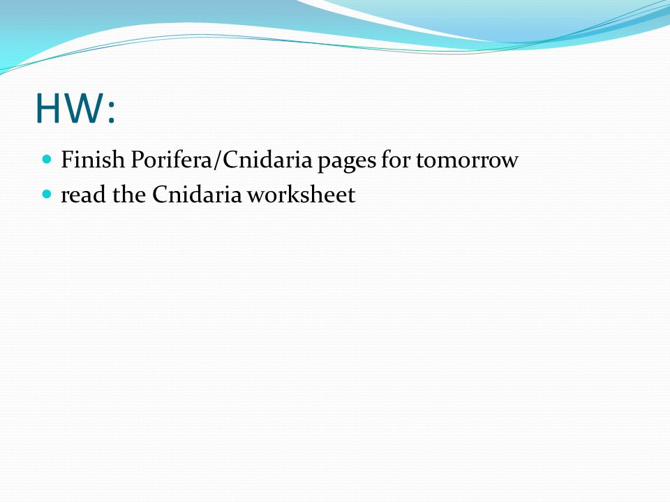 HW: Finish Porifera/Cnidaria pages for tomorrow
