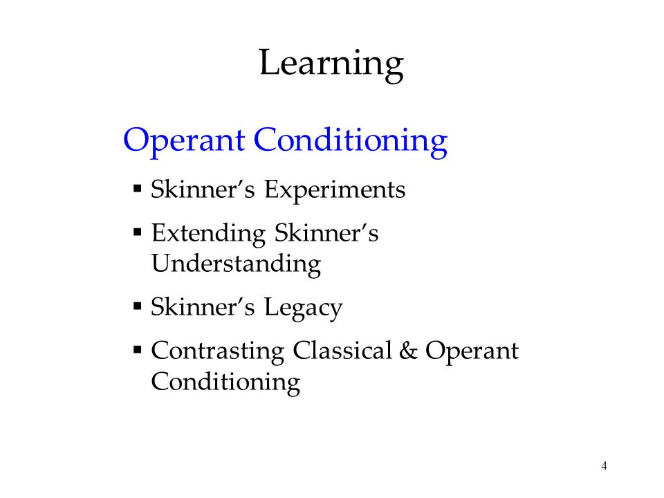 Learning Operant Conditioning Skinner's Experiments