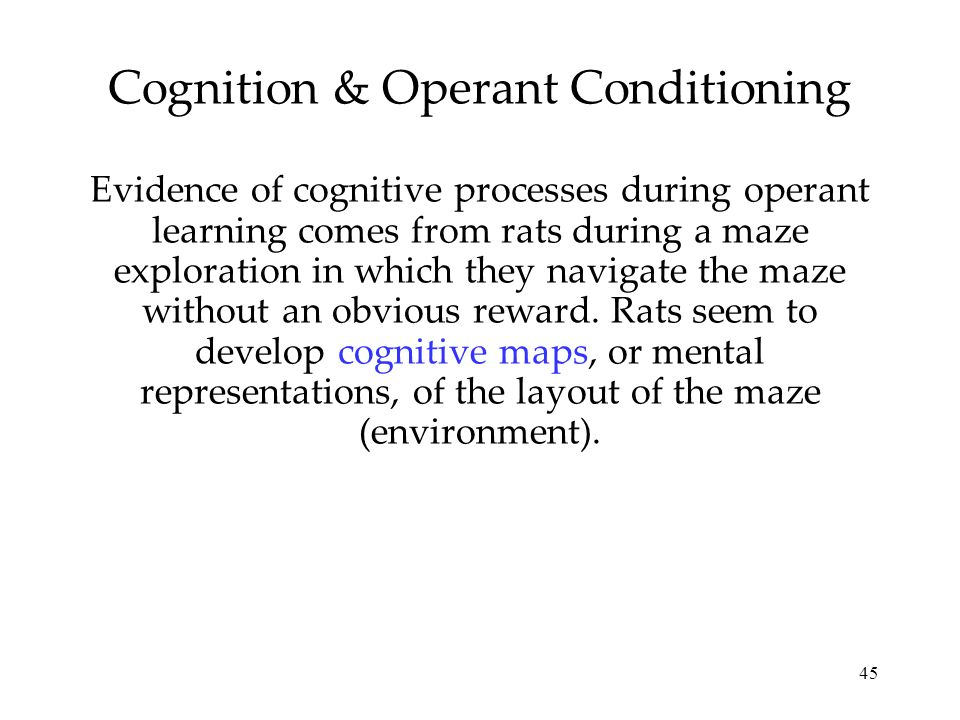 Cognition & Operant Conditioning