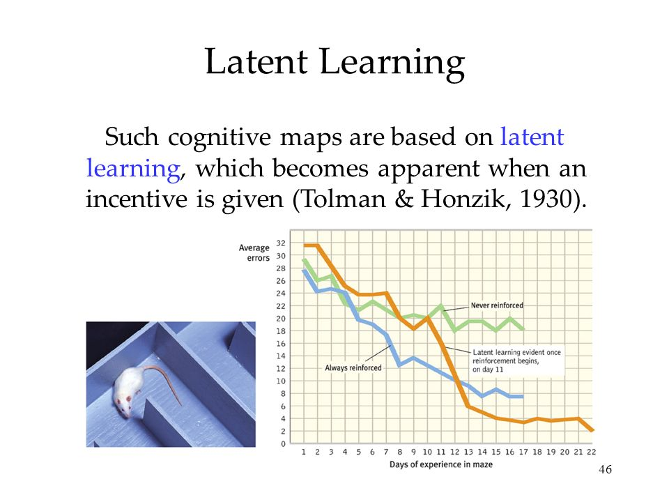 Latent Learning Such cognitive maps are based on latent learning, which becomes apparent when an incentive is given (Tolman & Honzik, 1930).