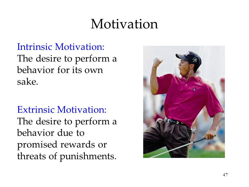 Motivation Intrinsic Motivation: The desire to perform a behavior for its own sake.