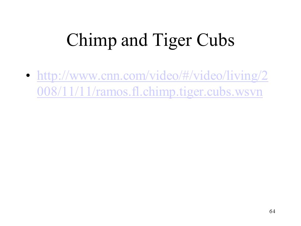 Chimp and Tiger Cubs http://www.cnn.com/video/#/video/living/2008/11/11/ramos.fl.chimp.tiger.cubs.wsvn.