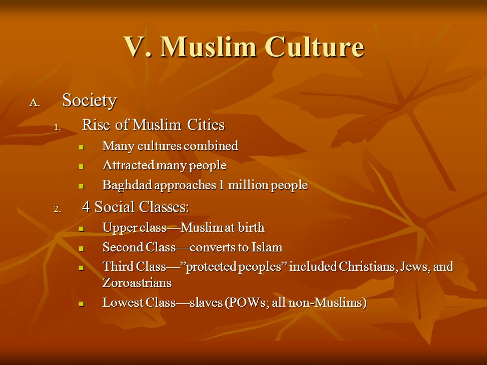 V. Muslim Culture Society Rise of Muslim Cities 4 Social Classes: