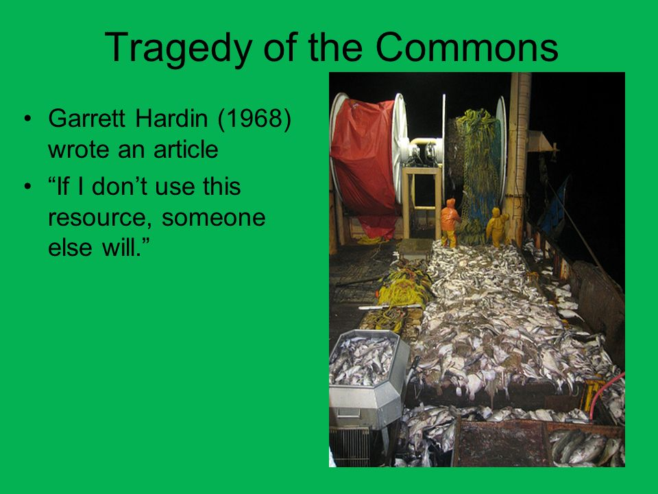 Tragedy of the Commons Garrett Hardin (1968) wrote an article