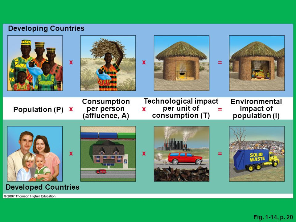Technological impact per unit of consumption (T) Environmental