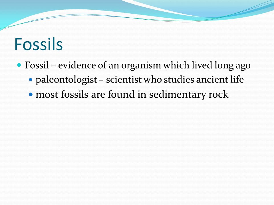 Fossils most fossils are found in sedimentary rock
