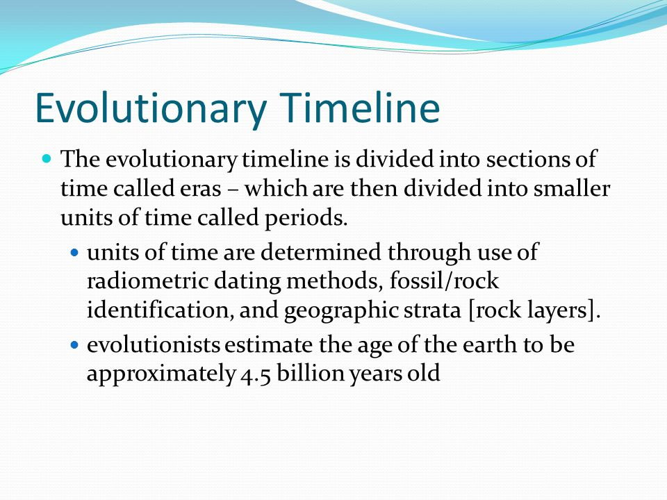 Evolutionary Timeline