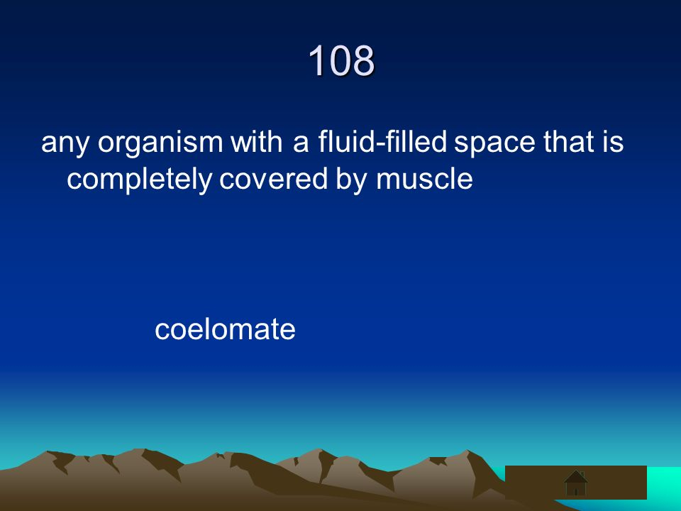 108 any organism with a fluid-filled space that is completely covered by muscle coelomate