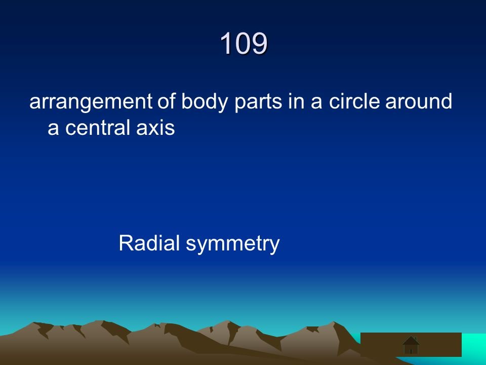 109 arrangement of body parts in a circle around a central axis