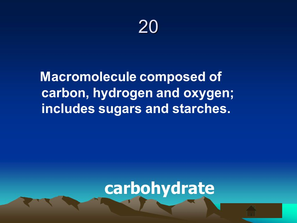 20 Macromolecule composed of carbon, hydrogen and oxygen; includes sugars and starches.