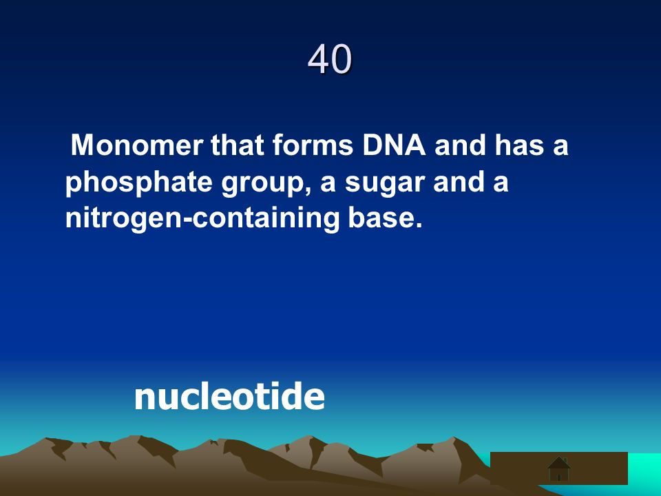 40Monomer that forms DNA and has a phosphate group, a sugar and a nitrogen-containing base.
