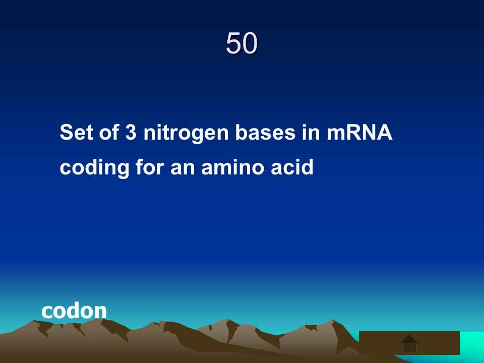 50 Set of 3 nitrogen bases in mRNA coding for an amino acid codon