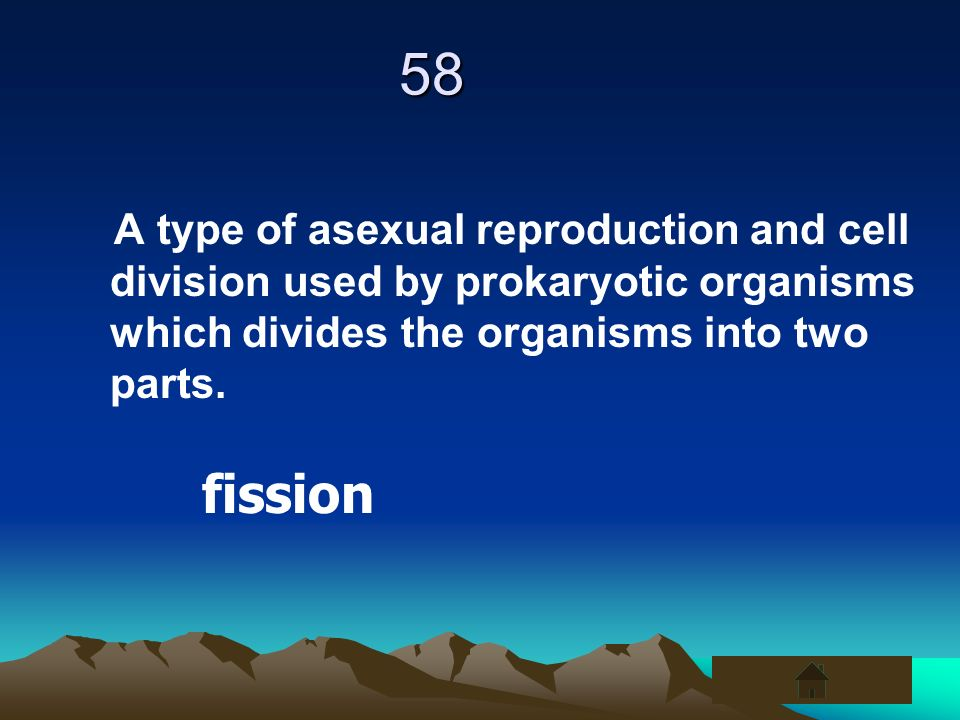 58 A type of asexual reproduction and cell division used by prokaryotic organisms which divides the organisms into two parts.