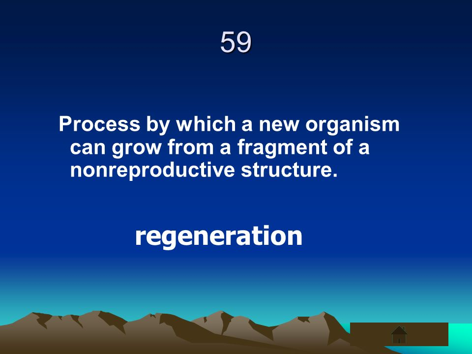 59 Process by which a new organism can grow from a fragment of a nonreproductive structure.