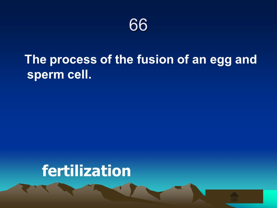 66 The process of the fusion of an egg and sperm cell. fertilization