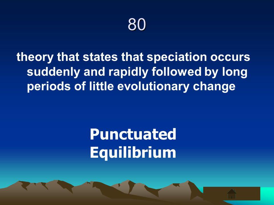80 Punctuated Equilibrium