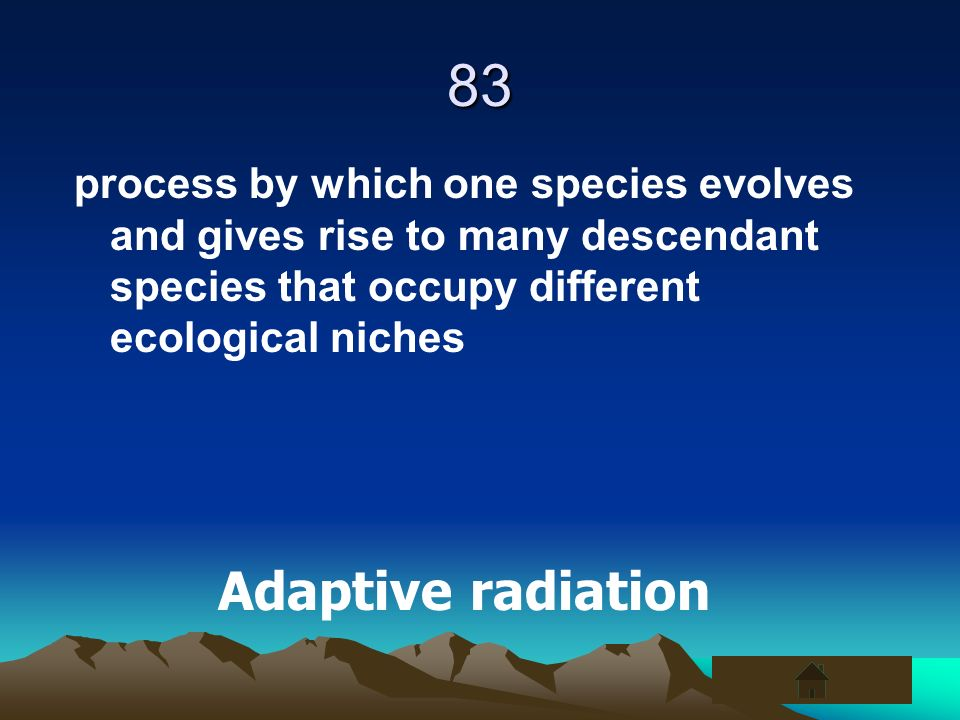 83 process by which one species evolves and gives rise to many descendant species that occupy different ecological niches.