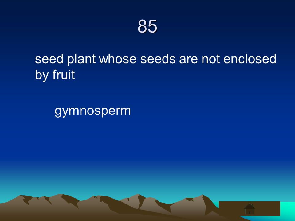 85 seed plant whose seeds are not enclosed by fruit gymnosperm