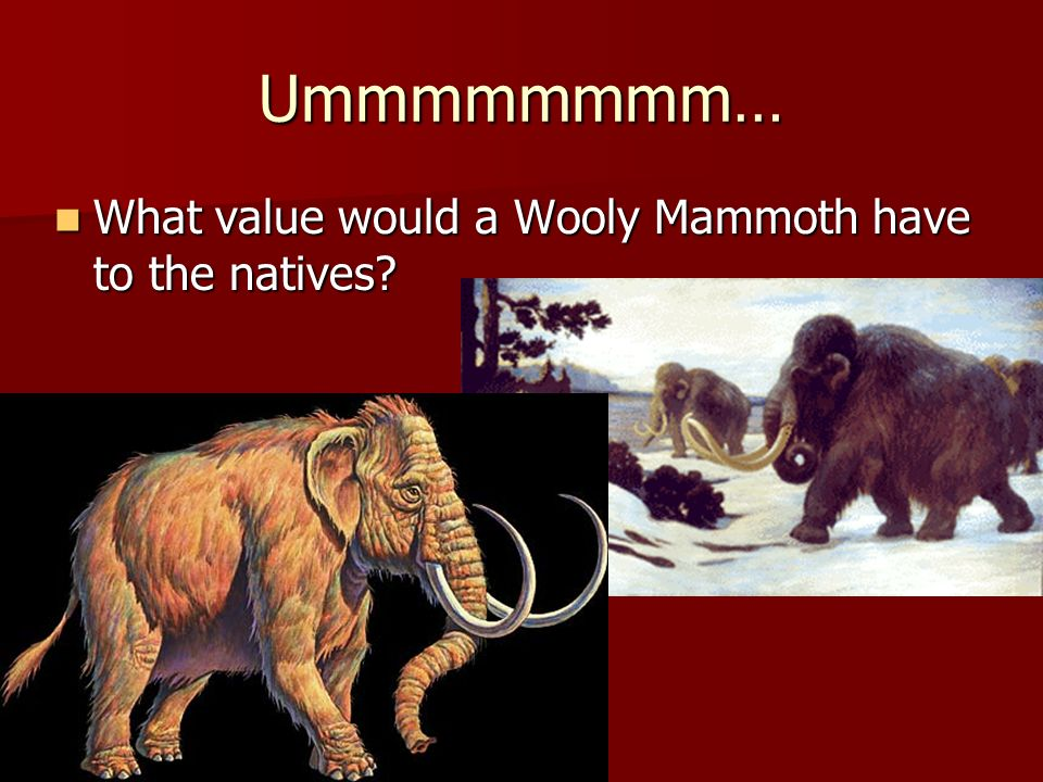 Ummmmmmmm… What value would a Wooly Mammoth have to the natives