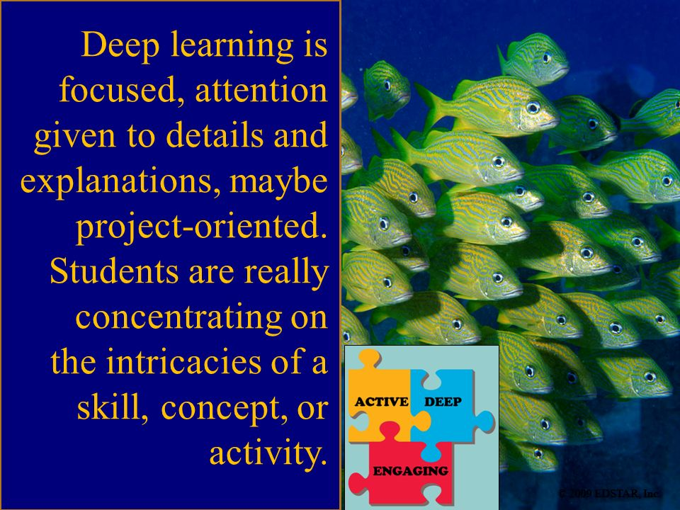 the intricacies of a skill, concept, or activity.