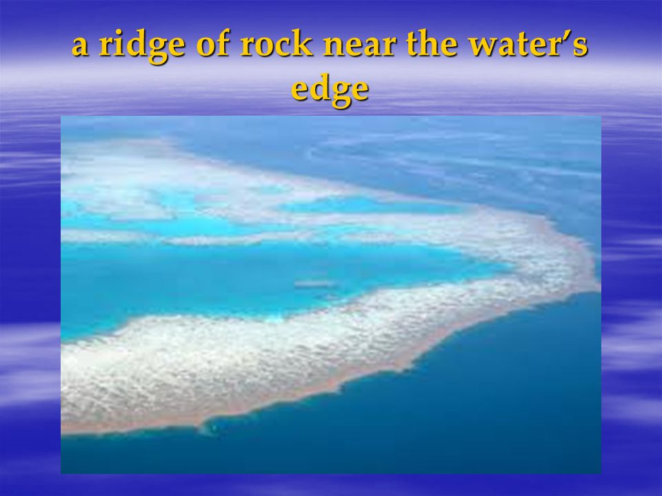 a ridge of rock near the water's edge