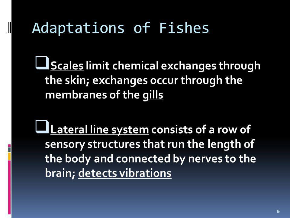 Adaptations of FishesScales limit chemical exchanges through the skin; exchanges occur through the membranes of the gills.