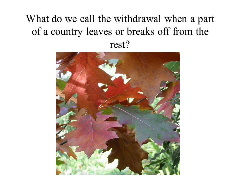 What do we call the withdrawal when a part of a country leaves or breaks off from the rest