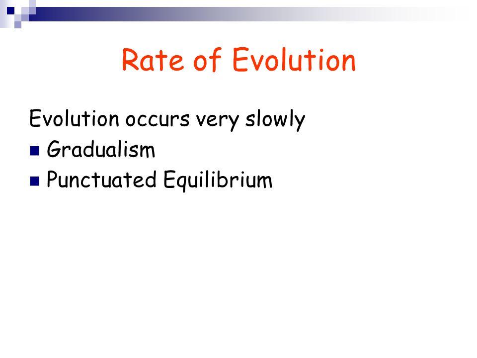 Rate of Evolution Evolution occurs very slowly Gradualism