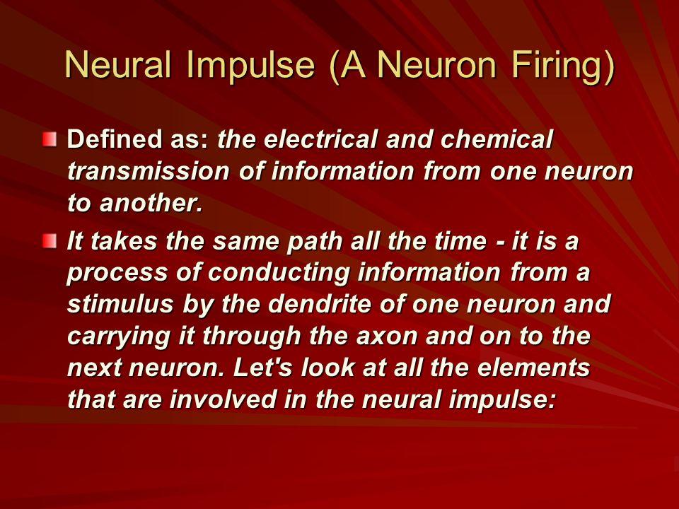 Neural Impulse (A Neuron Firing)