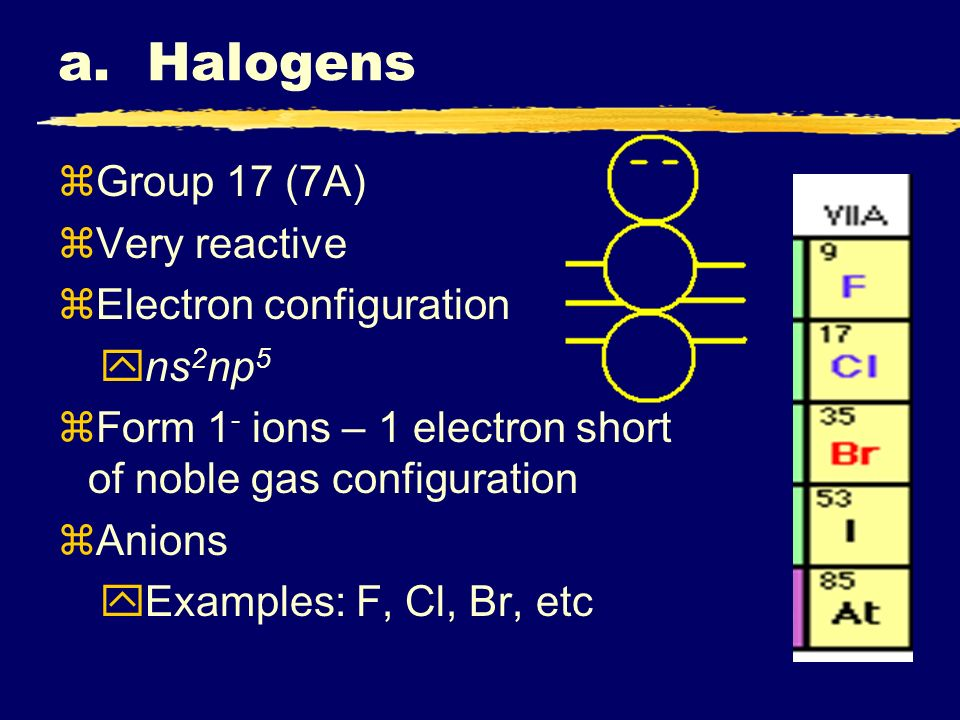 a. Halogens Group 17 (7A) Very reactive Electron configuration ns2np5