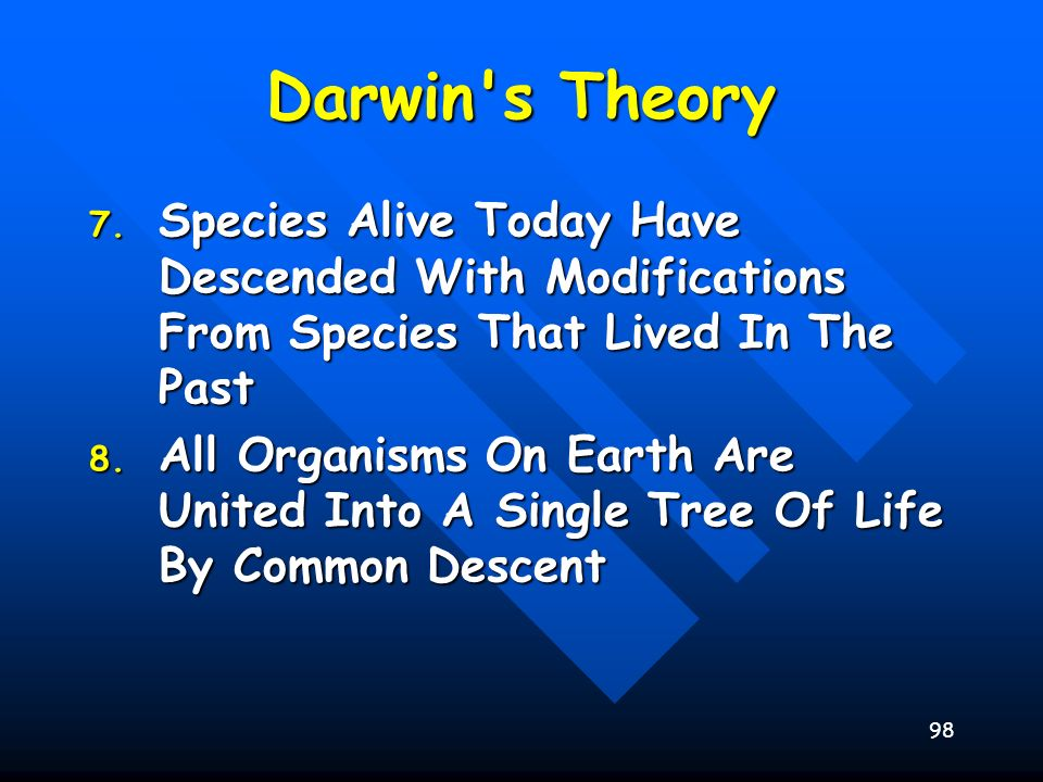 Darwin s Theory Species Alive Today Have Descended With Modifications From Species That Lived In The Past.