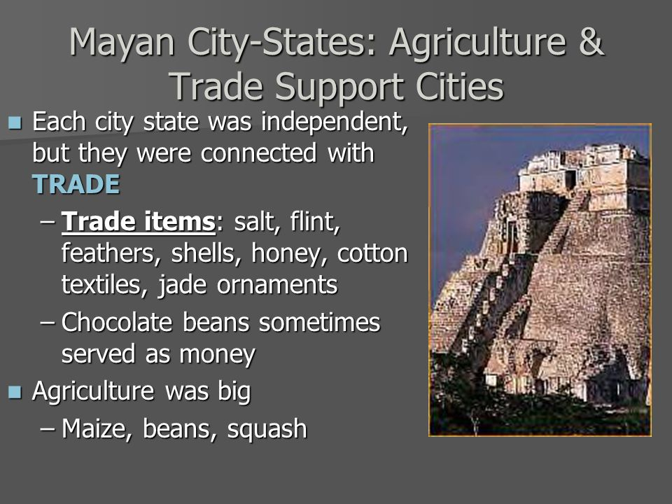 Mayan City-States: Agriculture & Trade Support Cities