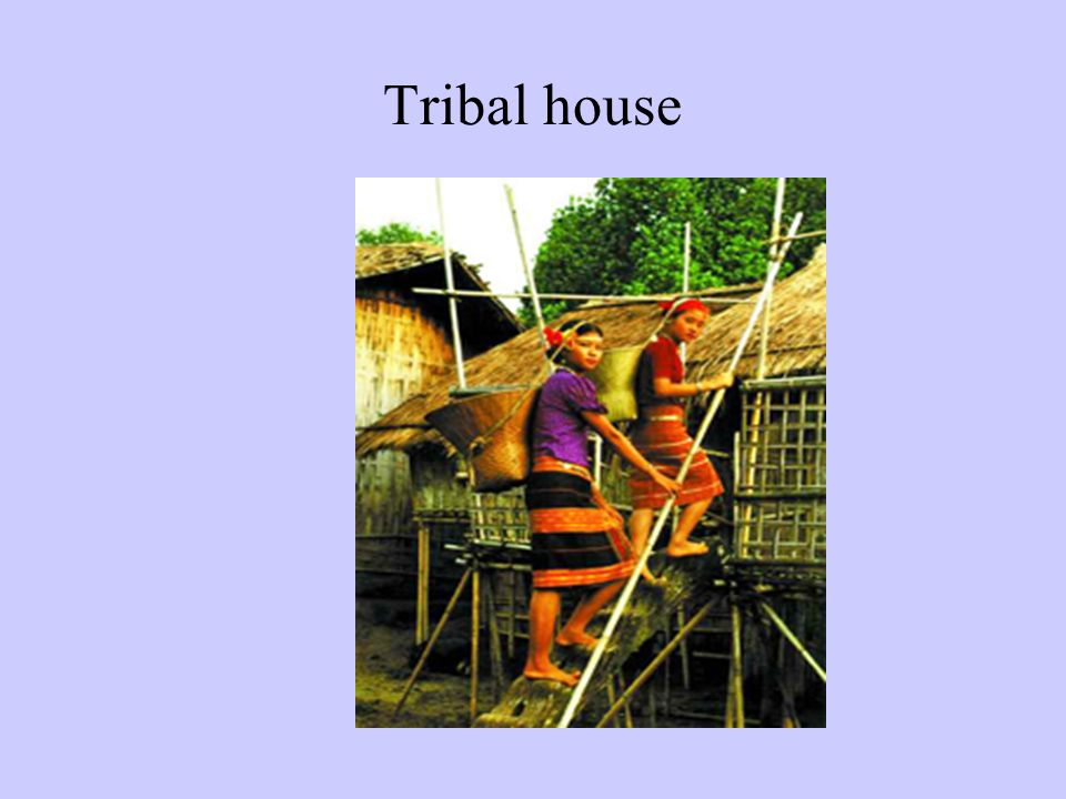Bangladesh facts and figures at a glance ppt video for Best tribal house