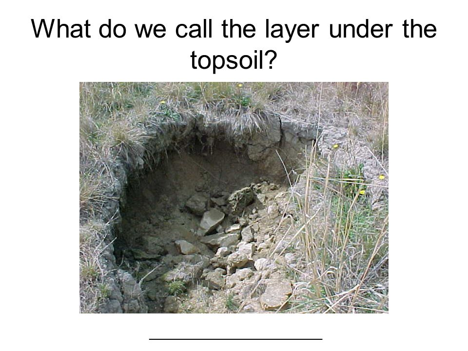What do we call the layer under the topsoil