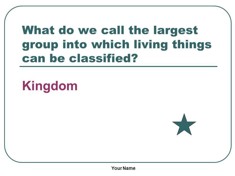 What do we call the largest group into which living things can be classified
