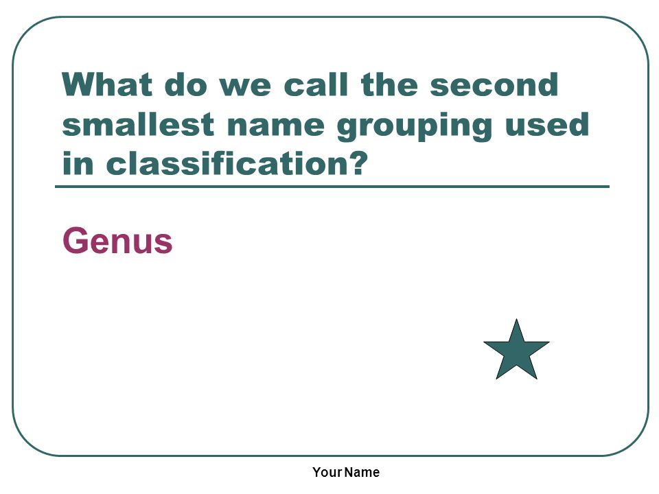 What do we call the second smallest name grouping used in classification