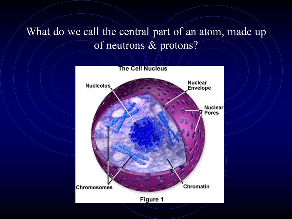 What do we call the central part of an atom, made up of neutrons & protons