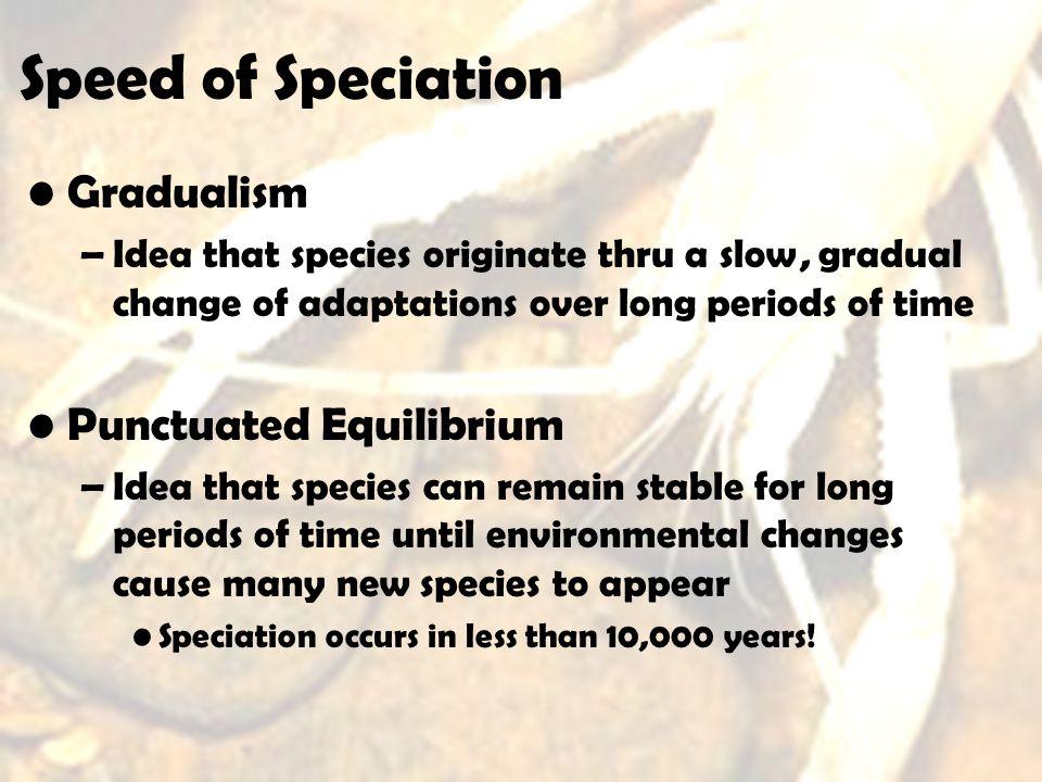 Speed of Speciation Gradualism Punctuated Equilibrium